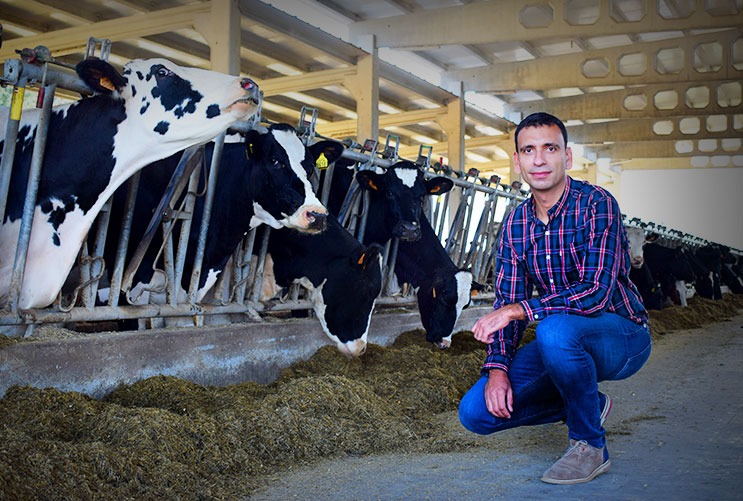 Iván Mato is a cattle veterinarian specialized in mastitis prevention & milk quality