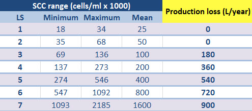 Bovine mastitis costs: Relationship between Somatic Cell Count (SCC), linear score (LS) and production losses.