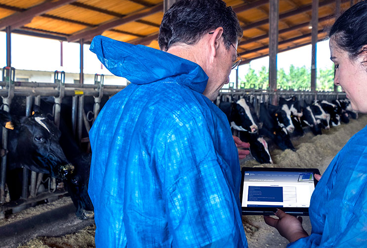Bovine mastitis costs: the estimated costs to dairy herds in the USA is around one billion dollars