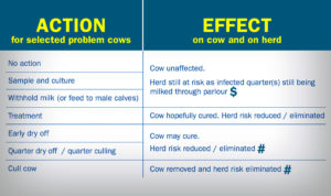 Individual cow SCC - Action lists