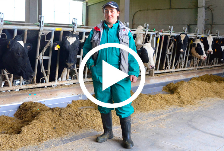 Testimonial, reduction of SCC in milk - Bovine Mastitis Vaccination