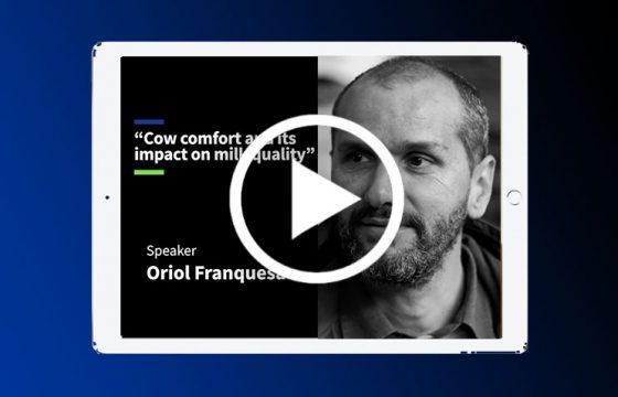 cow-comfort-mastitis-quick-talks