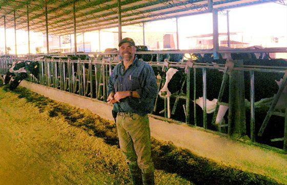 testimonial-bovine-mastitis-vaccination-farm-B